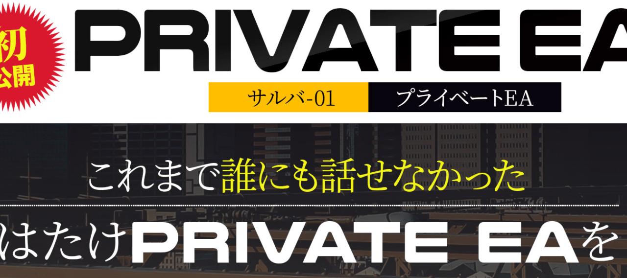 プライベートEA サルバ01